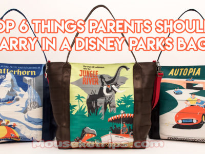 Top 6 Things Parents Should Carry in a Disney Parks Bag